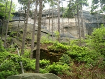 Felswand_hinter_Krinitzgrab_klein