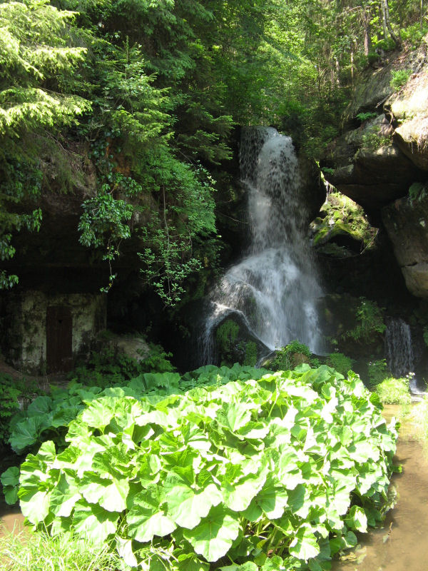 Lichtenhainer_Wasserfall_in_Aktion_klein