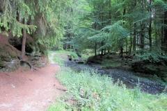 Weg_im_Kaltenbachtal_klein