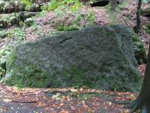 Felsinschrift_und_Vogel_im_Zscherregrund_klein