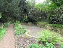 trockener_Teich_im_Rhododendronpark_klein