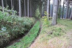 Hohlweg_Schmugglerweg_klein