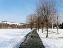 winterlicher_Bruno_Barthel_Weg_Rathewalde_klein