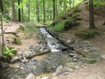 Kanal_am_Kreibitzbach_klein