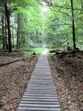 Bretterweg_Grosser_Winterberg_klein