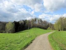 Muehlweg_Blick_auf_Pinsenberg_klein