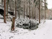 winterliche_Thorwaldquelle_klein