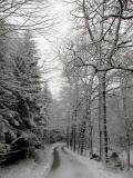 winterlicher_Grosser_Zschand_Weitung_klein