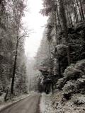 winterlicher_unterer_Grosser_Zschand_klein