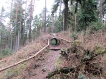 Eingang_Fuchsbau_klein