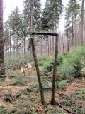 Galerie_der_Naturschoenheit_Fenster_klein
