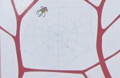 Spinnennetz_Schritt_3