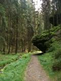 Pfad_in_Weissbachtal_klein