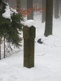 winterliche_Forstbergsaeule_klein