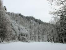 winterliche_Wiese_am_Raubschloss_klein