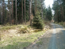 Forstort_Ruchestein_klein
